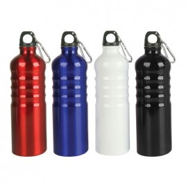 Curvy Aluminium Sports Bottle