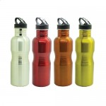 BO-054-Stainless-Steel-Big-Rib-Bottle-All