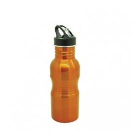 Stainless Steel Small Rib Bottle